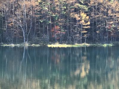 ナビをミス・精進ヶ滝~写真写り抜群・御射鹿池~零下の北横岳