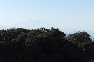 江の島山頂