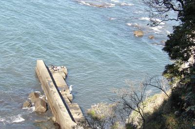 江の島山ふたつと下道からの眺め