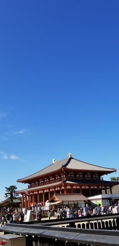 ふらっと奈良 正倉院展に来ています