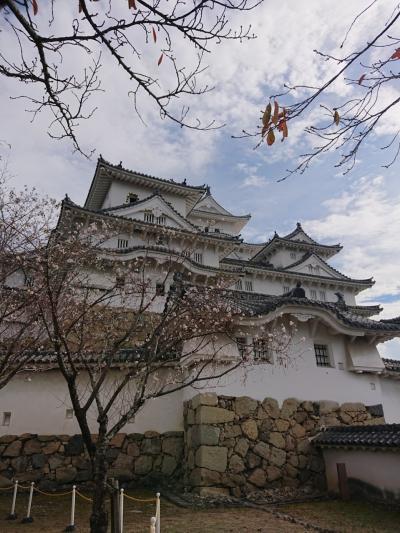 世界文化遺産の姫路城に感動の旅201811①(はじめまして姫路城編)