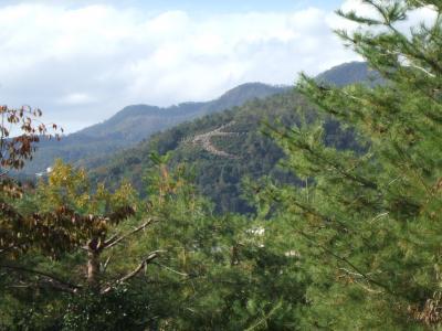 京都ぶらぶらお散歩~白峰神宮からぐるっと御霊神社まで
