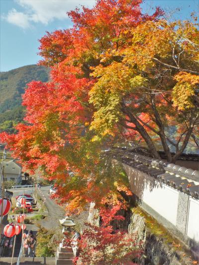 佐用町清林寺の紅葉と佐用の大イチョウ
