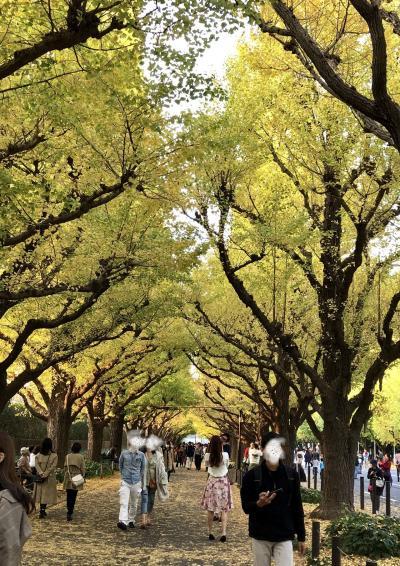 色づき始めの神宮外苑イチョウ並木