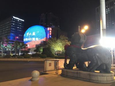 上海 夜の旅 - マニアック編