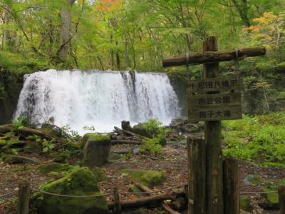 奥入瀬渓流の眺めを楽しみながら石ヶ戸から子ノ口まで歩きました