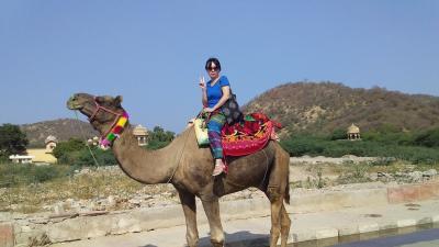 ジャイプールでラクダに乗る