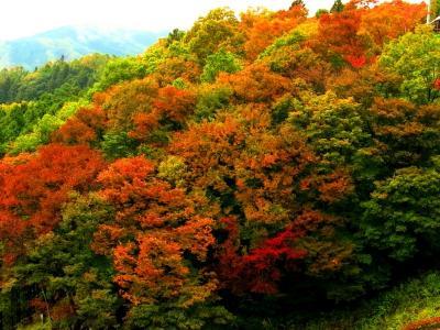 福島ぶらり ~紅葉を探してふらふら~