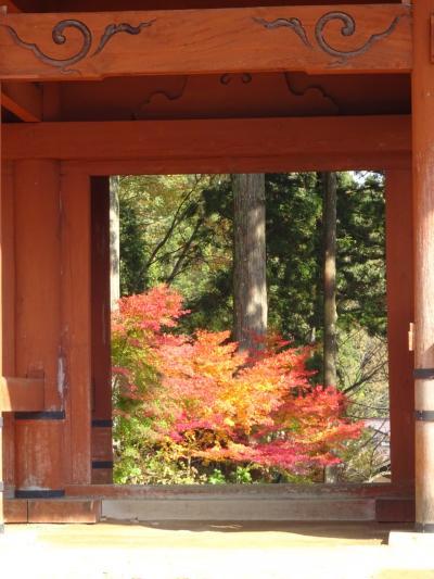 【万博記念公園・高野山・山科・大原】思いつくままに秋を満喫♪