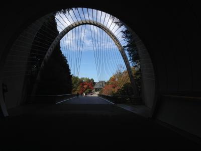 MIHOミュージアム 「百の手すさび 近代の茶杓と数寄者往来」鑑賞