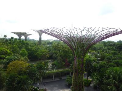 大都市と自然が融合した都市国家シンガポールの旅