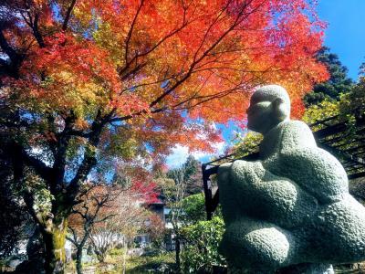 箱根の紅葉 仙石原のススキ 竜宮殿でゴージャス温泉
