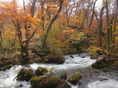 「錦秋に染まる美しき北東北紅葉めぐり」の冊子ページを見て2泊3日の旅を決めました。