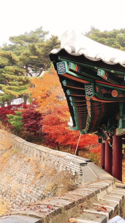 ソウル食欲だけにあらず、錦秋の南漢山城てくてく親子旅