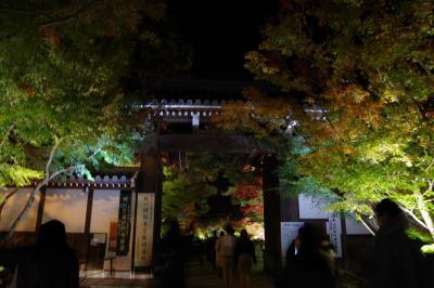 そうだ、京都へいこー。ふらっと紅葉狩りへ