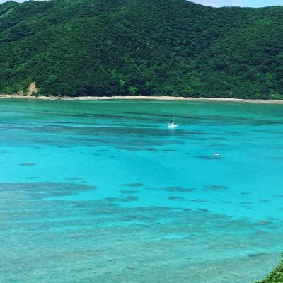 4歳児と一緒に 喜界島、奄美大島、加計呂麻島旅行(^^♪