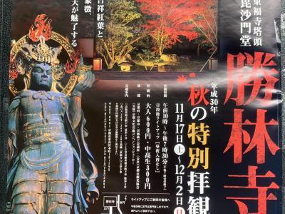 東福寺からお稲荷さんへ1万歩のウオーキング!