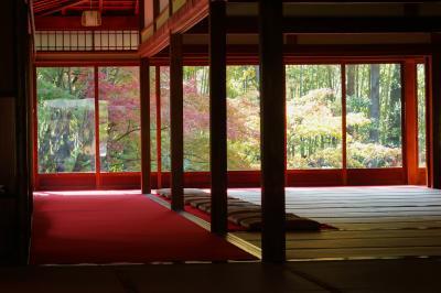 まだすこし紅葉には早いですが 混雑を避けての京都 南禅寺天授庵に行ってみました 2018No1