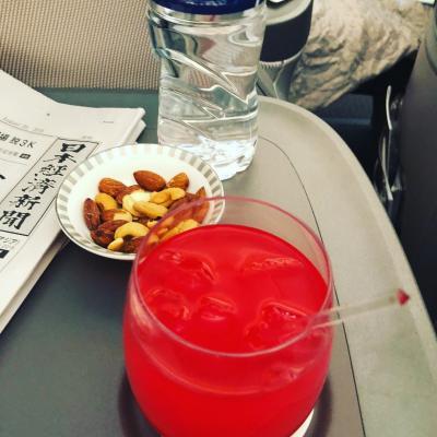 やっと乗れた!!旅行記やっと完成!!ドリームライナーシンガポール航空787-10往復ビジネスクラスで行く!シンガポール