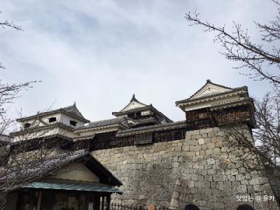 別荘からの恒例の夫婦旅 今年は四国 (愛媛 ③ 松山城)