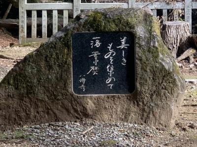 12,000歩の奈良公園界隈の朝のウォーキング!
