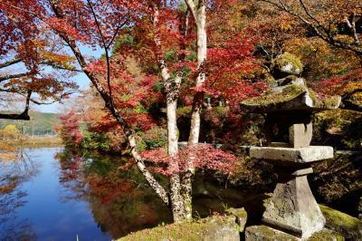 宝生寺の紅葉 2018