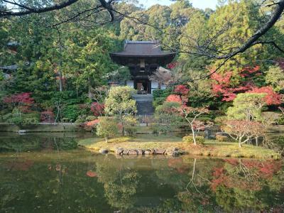奈良の吉野で川床遊び