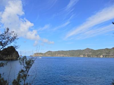 小笠原父島を歩く#5(5&6日目)海洋センター、電信山線歩道、大村海岸。さよなら父島。