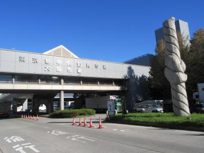 大田市場と周辺にある3つの公園巡り