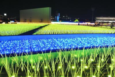 ☆関東最大級の東京メガイルミ☆ 体験型の新イルミネーションは大井競馬場で