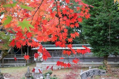 琵琶湖をぐるっと紅葉巡りのはずがちょっと早くで残念