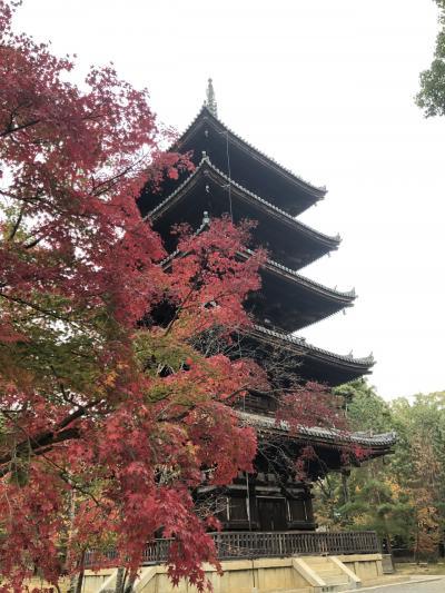京都で88箇所巡礼体験
