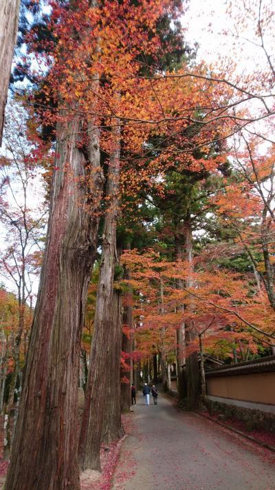 広島☆佛通寺の紅葉とカフェめぐり