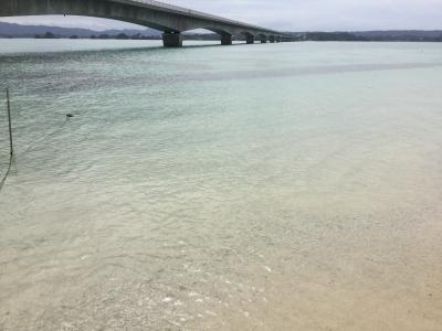 沖縄5日目  古宇利島への簡単な行き方