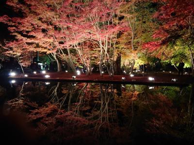 曽木公園の逆さ紅葉にちょー感動