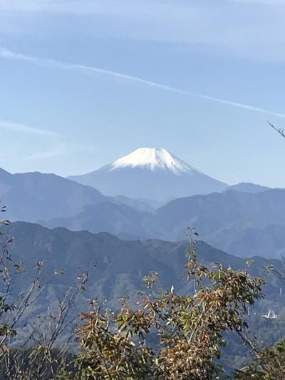 高尾山紅葉ハイキング