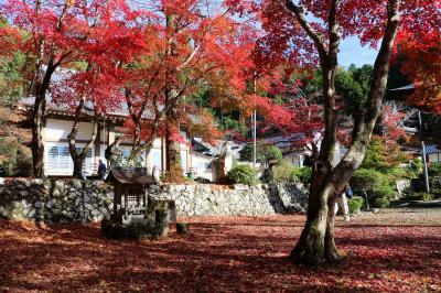 今年も丹波・篠山の紅葉巡りに出かけてきました
