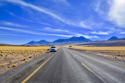 アンデス山脈を越えて、世界最高峰4000m超、天空の砂漠:『アタカマ砂漠』で美しい光景と、薄い空気に、くらくらでへろへろになる旅....#11....「ミスカンティ湖」(サンペドロ・デ・アタカマ San Pedro de Atacama/チリ)