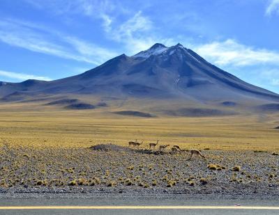 アンデス山脈を越えて、世界最高峰4000m超、天空の砂漠:『アタカマ砂漠』で美しい光景と、薄い空気に、くらくらでへろへろになる旅....#12....「ミスカンティ湖」(サンペドロ・デ・アタカマ San Pedro de Atacama/チリ)
