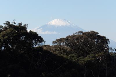 江の島の富士山ビュースポット