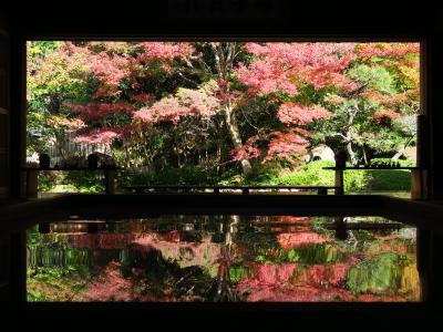 秋の長崎(1)寿福寺の逆さ紅葉と佐世保バーガー