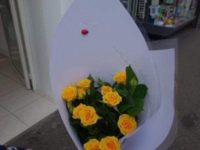 Prado の市でバラを買いました。船室を楽しくするように。