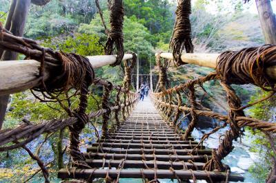 【香川・徳島】ノントッピングノンストップ半泣きうどん6連食、からの秘境大歩危祖谷峡かずら橋。