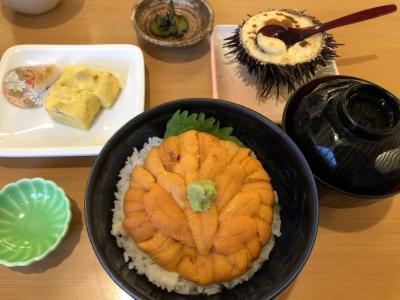 愛馬の応援で京都のはずが函館一人旅 DAY2 函館 うにむらかみde無添加生うに丼&函館配水場