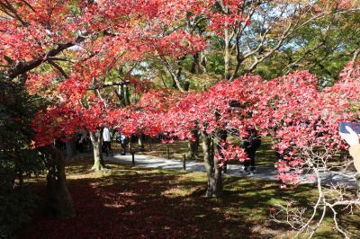 秋の京都 色づき始めの紅葉スポットを2泊3日で(1)東福寺から伏見稲荷