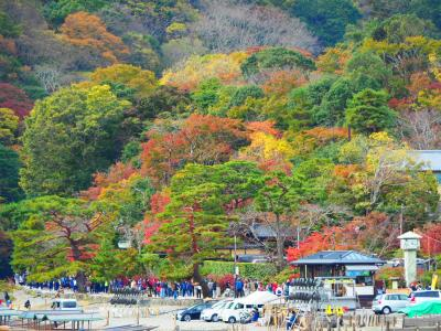 京都の紅葉・南座観劇プラス嵐山・高雄散策と老舗旅館の美・食・観フルコースな贅沢旅
