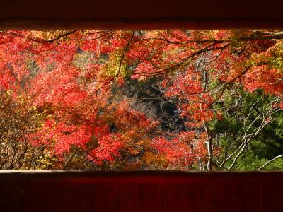 紅葉の白龍園