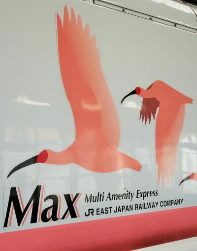 上野⇒新潟 上越新幹線Maxとき309・15号車で ☆弥彦山を見て11:13着⇒新潟港