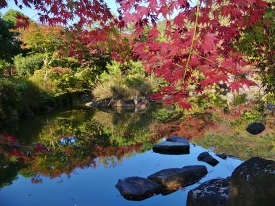 「三毳(みかも)庭園」の紅葉_2018_一部が色づき始めていました。(栃木市・岩舟町)