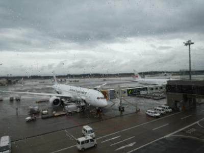 ドキドキ ドイツ(+7カ国)鉄道旅行 プロローグ JAL直行便でフランクフルトへ